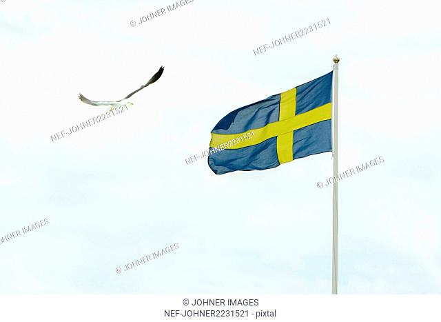 Swedish flag against sky