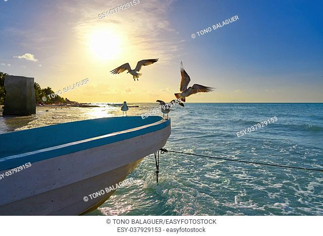 Holbox tropical Island seagulls beach boat in Quintana Roo of Mexico