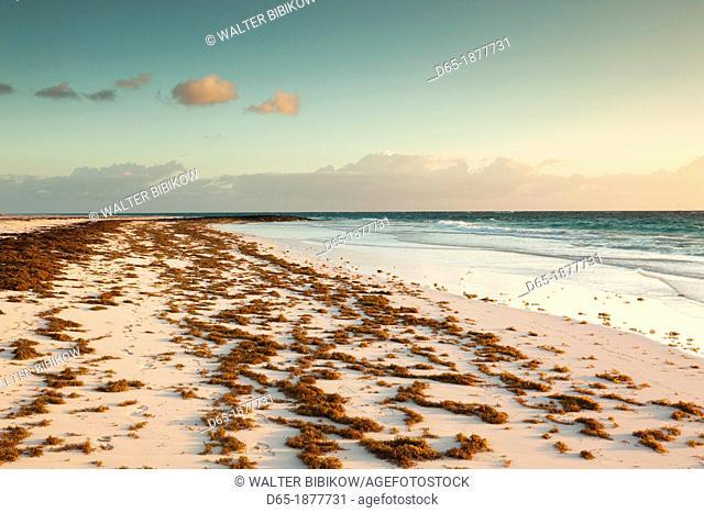 Bahamas, Eleuthera Island, Harbour Island, Pink Sands Beach, dawn
