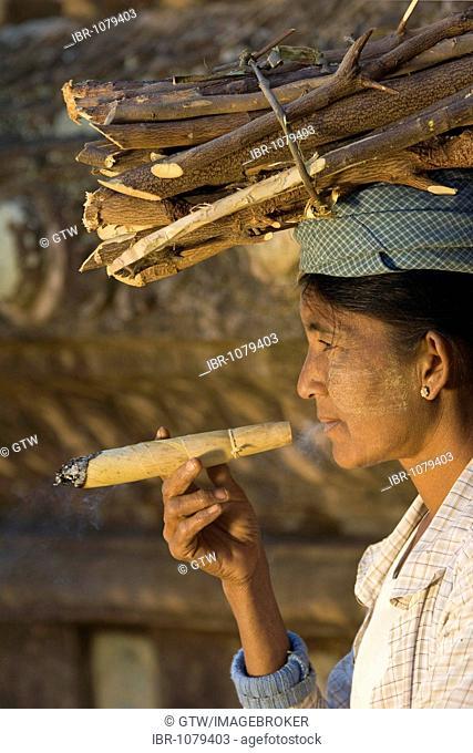 Burmese woman smoking a traditional cigar, cheroot or sheroot, while carrying wood on her head, Bagan, Myanmar