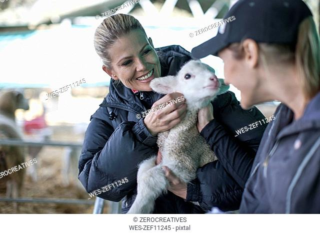 Two women holding little lamb on farm
