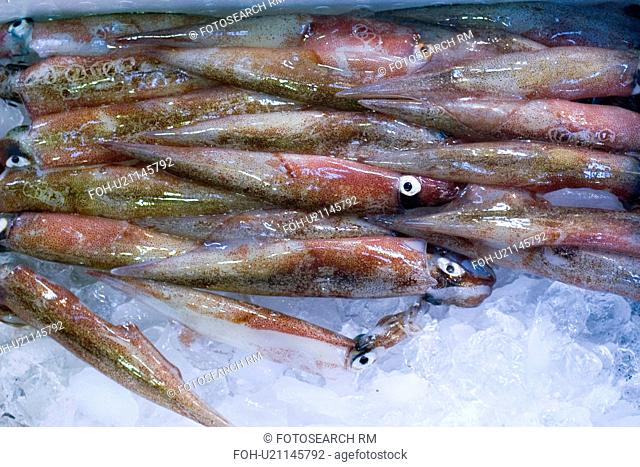 Squid, fish market
