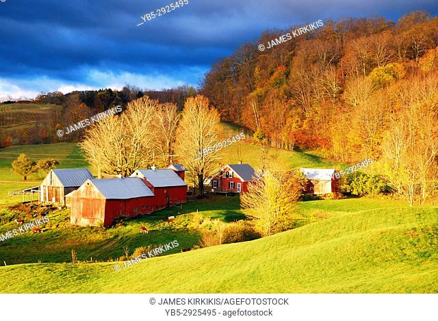 The first rays of sunlight brighten a rural scene near Reading, Vermont