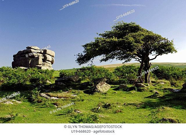 Combestone Tor, Dartmoor National Park, Devon, England, UK