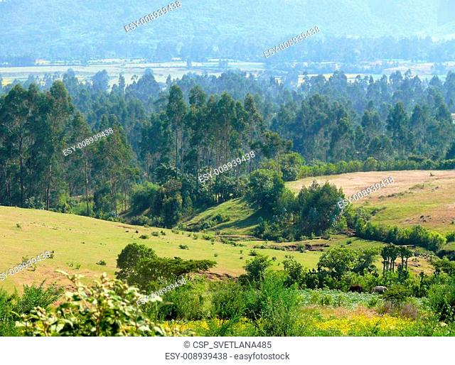 Africa, Ethiopia. Landscape of the African nature. Mountains, valleys and woods