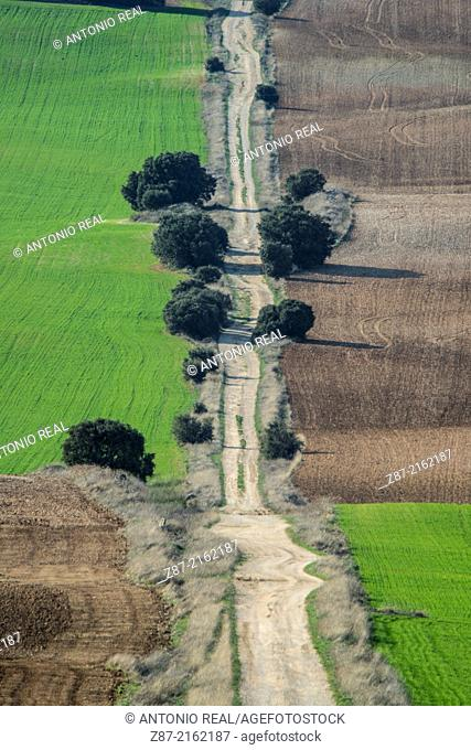 Fields, Villar de Cañas, Cuenca province, Castilla-La Mancha, Spain