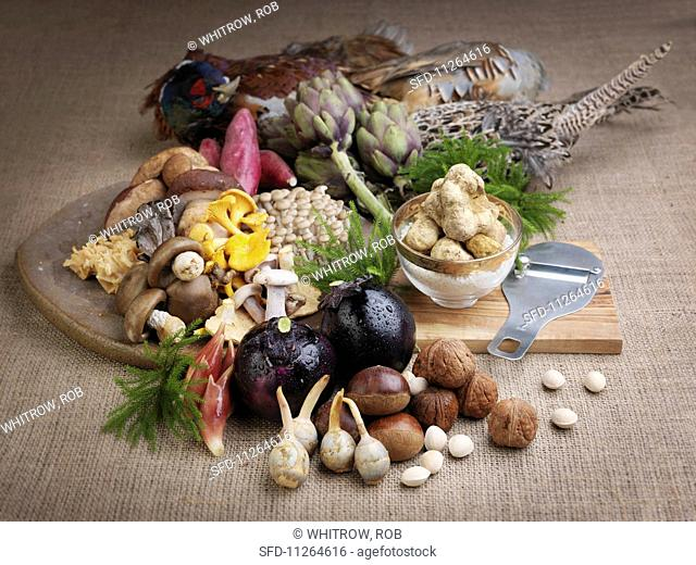 An arrangement of white truffles, various mushrooms, aubergines and game birds