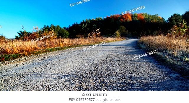 countryside road in autumn day