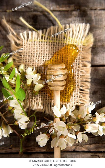 Presentation of small wooden spoon with acacia honey with its flower