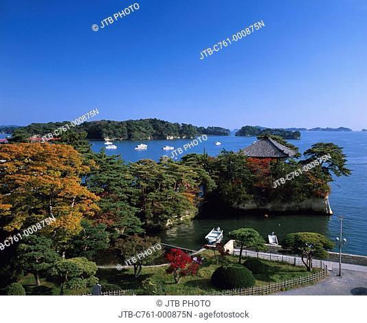 Autumn, Matsushima, Godaido, Matsushima, Miyagi, Japan