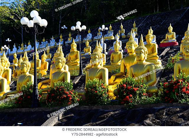 Golden Buddha near Pakse,South Laos,Southeast Asia