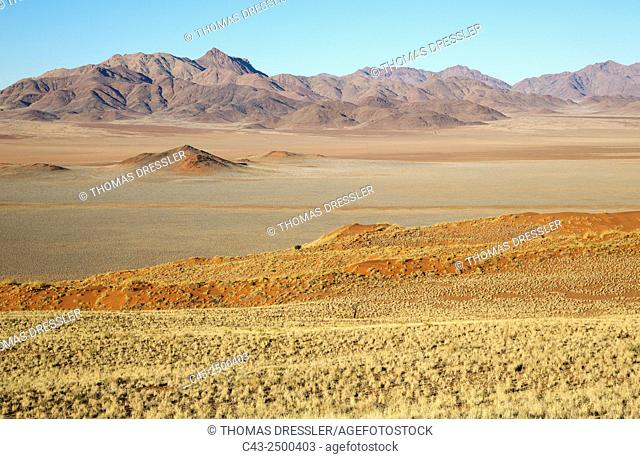 Sand dunes grown with bushman grass (Stipagrostis sp. ), arid desert plains and isolated mountain ridges at the edge of the Namib Desert in the area of the...