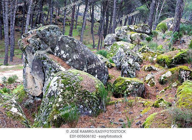 Granite in Valdelavieja. Cadalso de los Vidrios. Madrid. Spain