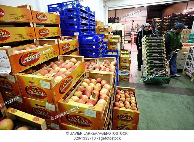 Apples, Mercabilbao fruits and vegetables wholesale market, Basauri, Bilbao, Bizkaia, Euskadi, Spain