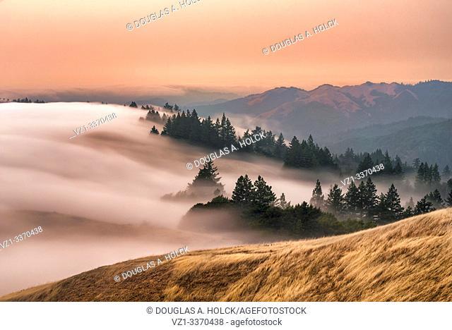 Coastal fog below Mount Tamalpais at Sunset Marin County CA USA