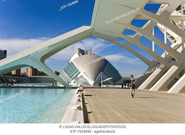 Príncipe Felipe Sciences Museum and The Hemisferic, City of Arts and Sciences, by S  Calatrava  Valencia  Spain