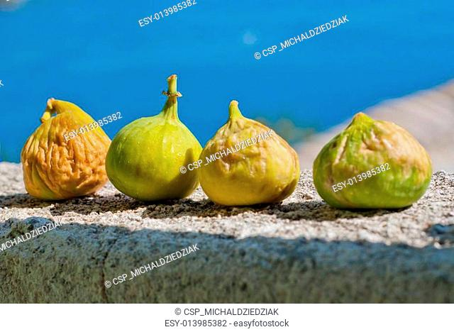 Fresh figs in the sunlight