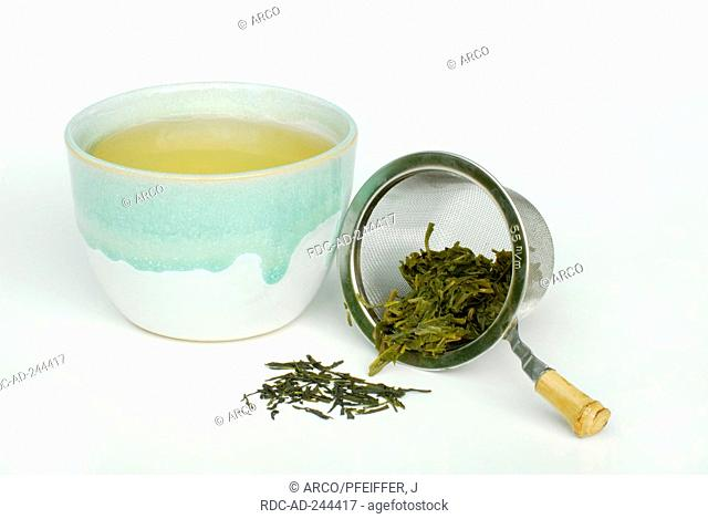 Cup and filter with Sencha Tea Green tea