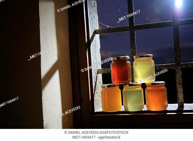 Organic honey, Tuscany, Italy
