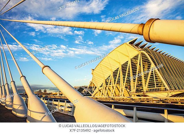 El Pont de l'Assut de l'Or and Museu de les Ciencies Principe Felipe, in City of Arts and Sciences. Valencia, Spain