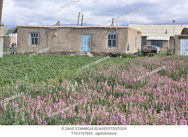 Local village life, Sary Mogul, Kygyzstan