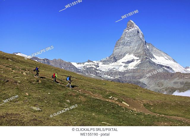 Hikers proceed with the Matterhorn in background in a clear summer day Gornergrat Canton of Valais Switzerland Europe
