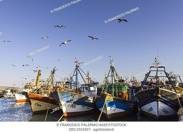 Old fishing port at sunset. Essaouira, Marrakech-Safi. Morocco