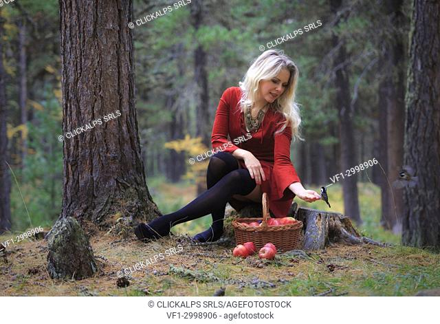 Girl in a red dress sit in a forest with a basket of apples with little birds coming on her hand, engadin, canton grisons, switzerland