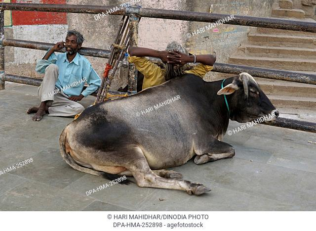 Crippled man on ghat, varanasi, uttar pradesh, india, asia