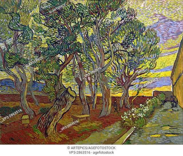 Vincent van Gogh - The garden of Saint Paul's Hospital - Van Gogh Museum, Amsterdam