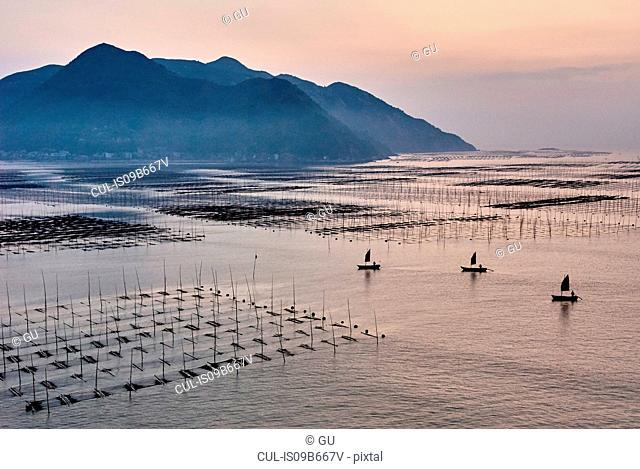 Traditional fishing boats and poles, Xiapu, Fujian, China