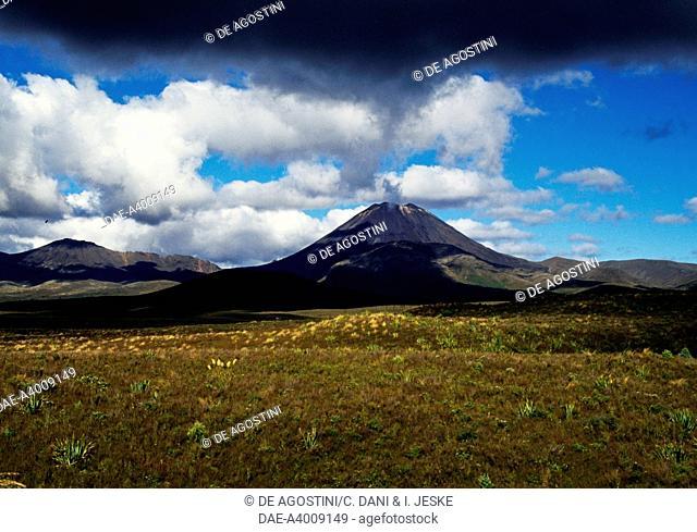 Central Plateau, Tongariro National Park (UNESCO World Heritage List, 1990), North Island, New Zealand