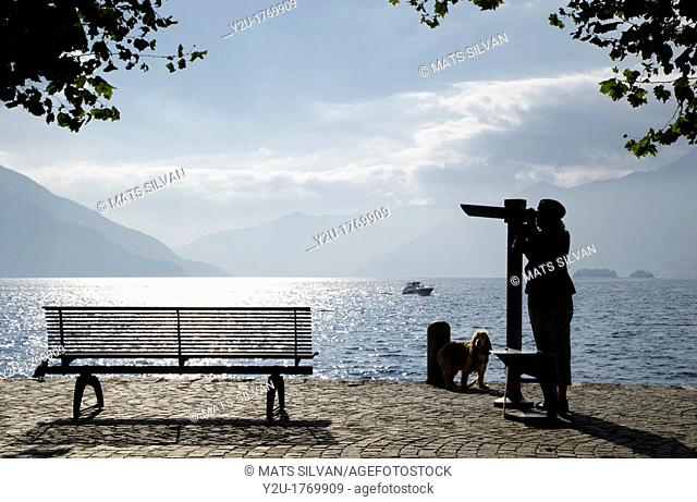 Woman with her dog close to a bench watching with a telescope over a lake with mountain and islands