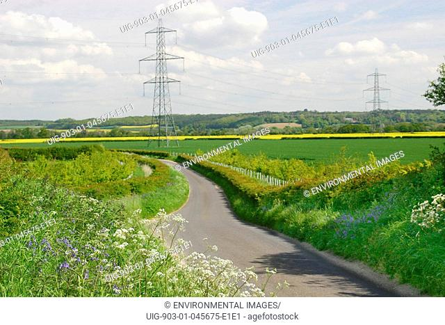 Tree planting and pylons, United Kingdom. Row of pylons across countryside, with new tree planting behind the hedgerow. New trees are paid for by grant aid and...