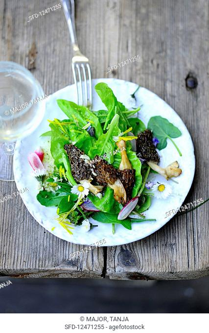 Mixed leaf salad with fresh morel mushrooms served with a glass of wine