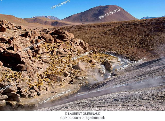 Thermal waters, Atacama Desert, Region of Antofagasta, Santiago, Chile