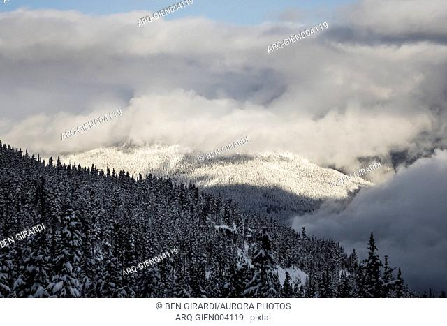 Majestic view with snow covered mountains and forest in winter, Whistler, British Columbia, Canada