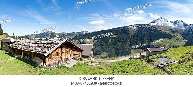 Austria, Tyrol, Alpbach valley, the Moser-Baumgartenalm below the Wiedersberger Horn