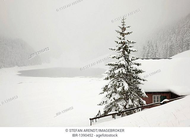 Winter landscape with fresh snow in the Alpstein massif, Appenzell, Switzerland, Europe