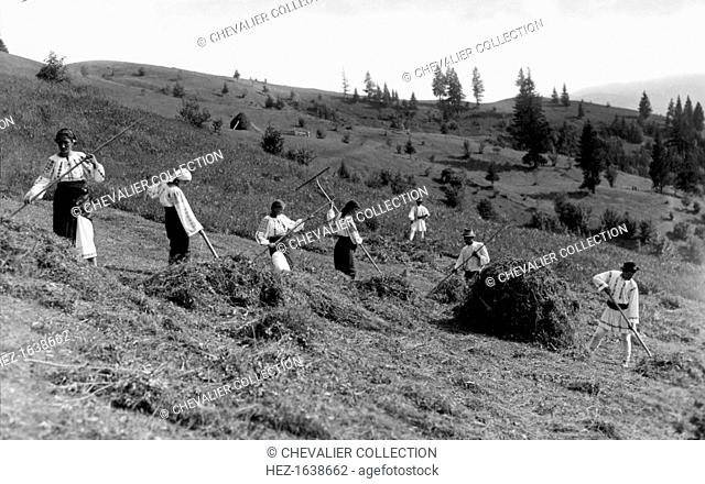 Working at harvest time, Bistrita Valley, Moldavia, north-east Romania, c1920-c1945. Depicting customs and traditional labour in the rural Carpathian Mountains...