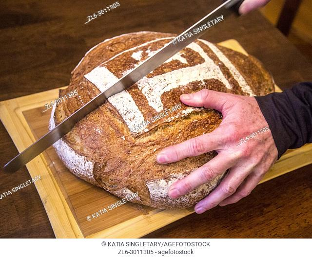 Man with a black shirt cutting a round loaf of bread. We can see the long bread knife cutting the bread in half and pieces