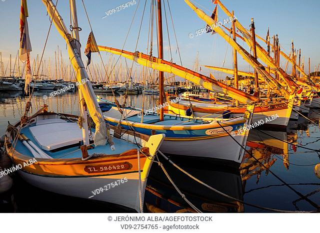 Fishing boats at fishing port, Marina, old harbour. Village of Bandol. Var department, Provence Alpes Cote d'Azur. French Riviera. Mediterranean Sea