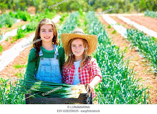 Litte kid farmer girls in onion harvest at orchard