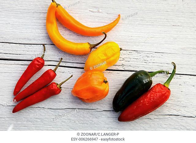 Colourful capsicum peppers