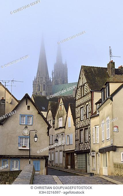 pont Bouju et rue du Bourg avec la Cathedrale de Chartres en arriere-plan,Eure-et-Loir,region Centre,France,Europe/Bouju bridge and Bourg street with the...
