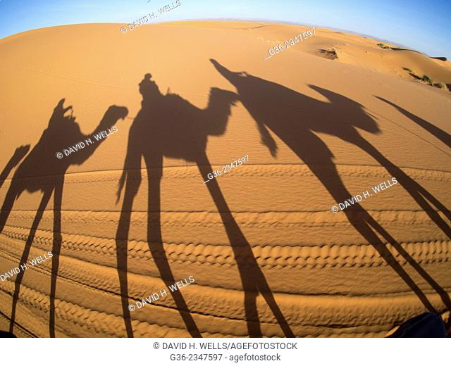 Shadow of people on sand at desert in Erg Chebbi, Morocco