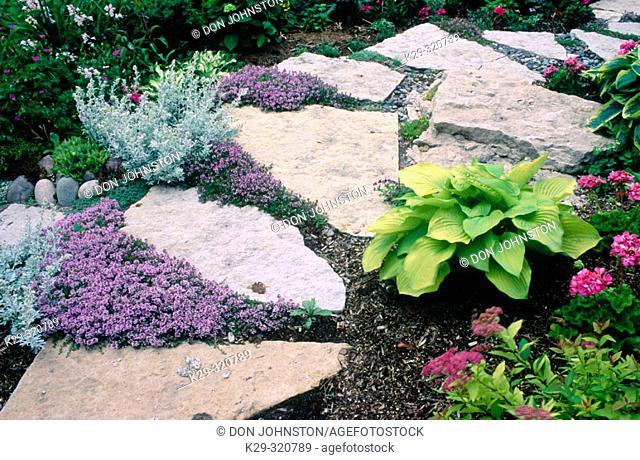 Dr. & Mrs. K. Abourbih's limestone path garden. Sudbury. Ontario. Canada