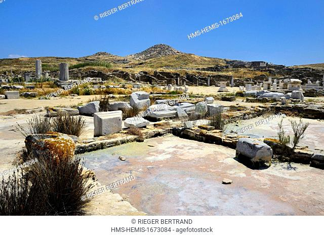 Greece, Cyclades islands, Delos, listed as World Heritage by UNESCO, the archaeological site of Delos, Apollo's Sanctuary