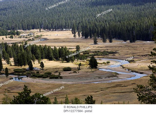 Tuolumne River, Yosemite National Park; California, United States of America