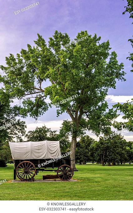 Covered wagon and tree morning time